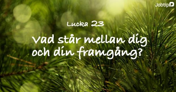 lucka23